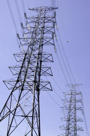 Pole electric sky as a backdrop.