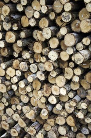 Pile of wood stacked  Zdjęcie Seryjne