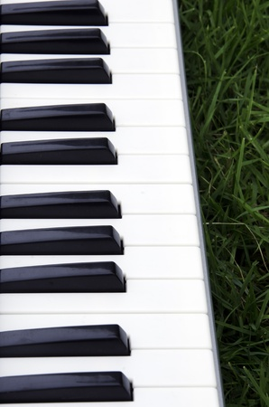 Piano with background lawn. photo