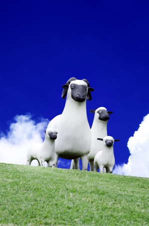grassy knoll: Family of sheep on the grassy knoll  Stock Photo