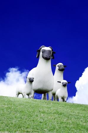 grassy knoll: Family of sheep on the grassy knoll  Stock Photo