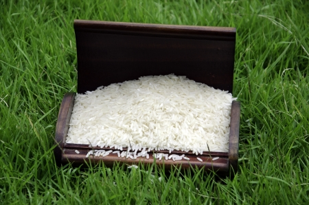 Rice in a box with grass in the background. photo