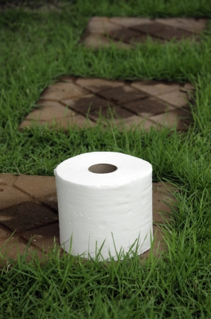 sniffles: White tissue paper on the lawn