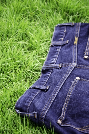 Jeans background with a green grass