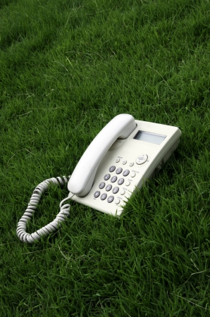White desktop phone in the field. photo