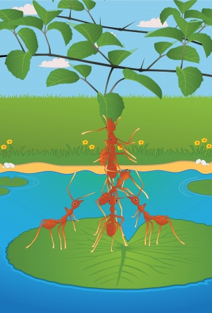 Ant masses on the leaves  Vector