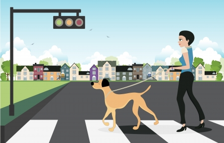 Woman jaywalking across a dog leash  Vector