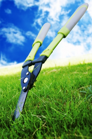 Scissors to cut the grass in the sky as a backdrop  photo