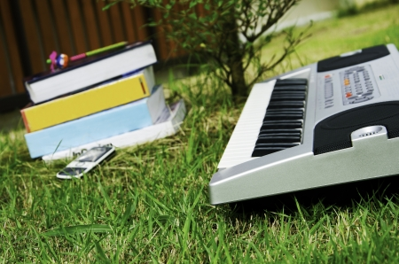 Piano with background lawn  photo