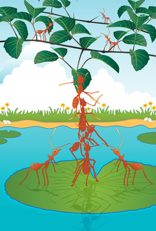 uphill: Ants are helping each other climb trees   Illustration
