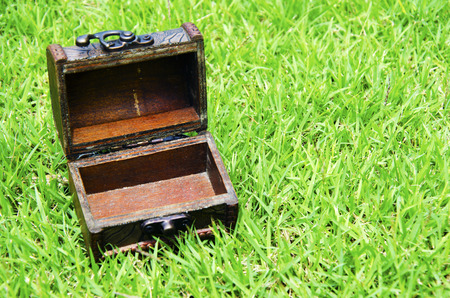 Old wooden box with grass in the background. photo