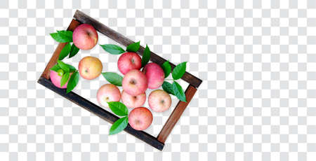 Organic apple in wooden frame Stok Fotoğraf