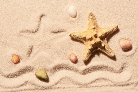 sea mark: Starfish, mark of starfish, mark of wave and sea stones on sand. Summer beach background. View from above