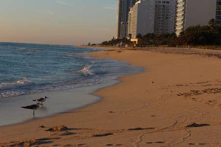 beach at sunrise on vacation Stock Photo