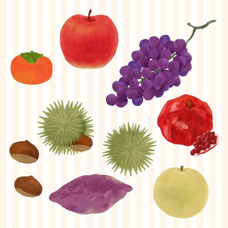 autumn fruits vector illustration collection Stock Illustratie