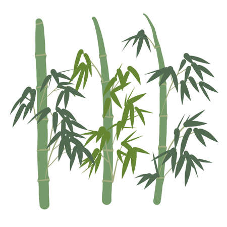 Simple bamboo vector illustrations