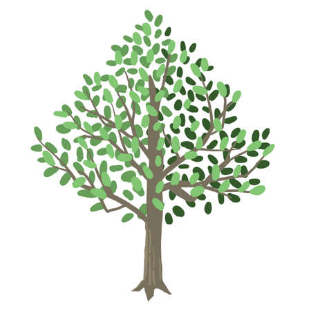 Vector illustration of a simple tree