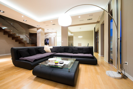 living room design: Interior of a luxury spacious living room