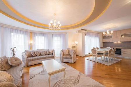 Interior of a luxury, open plan, apartment, living room Reklamní fotografie