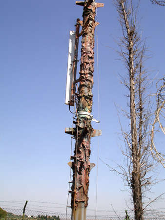 hidden danger: Cellular antenna is disguised as a dried-up tree  Stock Photo