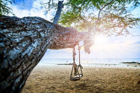 Schommelt op boom op het strand Stockfoto