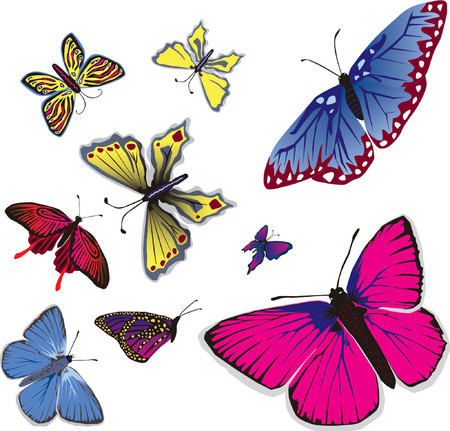 Vector illustration of many flying butterflies. Stock Vector - 825577