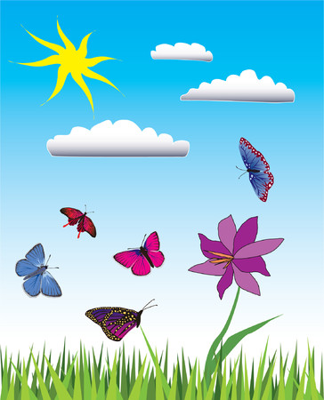 Vector illustration of flying butterflies in green meadow. Stock Vector - 903062