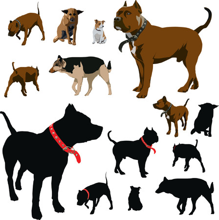 Colour dog illustrations and black silhouettes with red pet collar Vector