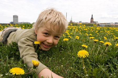 Preschool boy playing in meadow full of yellow dandelions. Riga old city in background photo