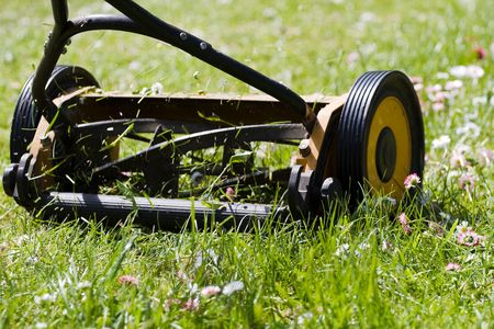 Hand lawn mower close up in meadow with daisies photo