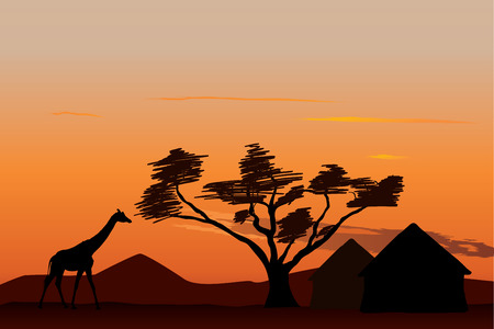 Giraffe near small african village at sunset