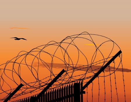enclosures: Vector illustration di recinzione metallica con filo spinato contro il cielo al tramonto Vettoriali