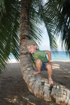 Boy on palm tree on a beach photo