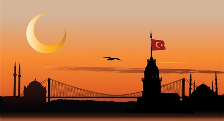 Vector silhouette of Istanbul cityscape against sunset sky Vector