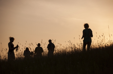 latvia girls: Silhouettes of People picking flowers during midsummer soltice celebraton against the background of sunset Stock Photo