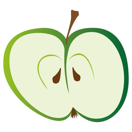 sliced fruit: Slice of half green apple. Vector illustration