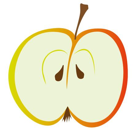 sliced fruit: Slice of half Red apple. Vector illustration