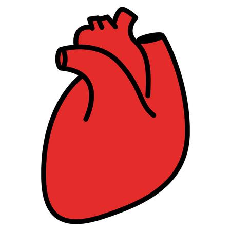 heart symbol: Red human heart. Linear thin line vector illustration