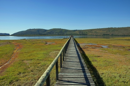 Knysna, Garden Route, Western Cape Province, South Africa.  photo