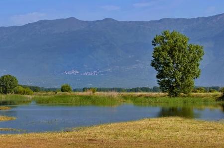 kerkini: Kerkini lake and mountain eco-area at nord Greece by Struma river