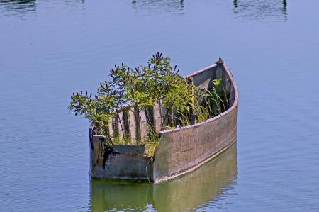 kerkini: Old wooden fishing abandoned boat at lake Kerkini in Greece