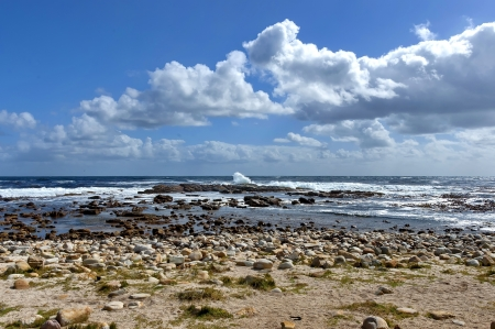 cape of good hope: Atlantic ocean coastline by Cape of good hope