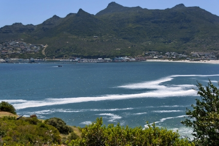 chapman: Chapman s Peak Drive  View to Hout town harbor area  Table Mountain National Park, Cape town  Stock Photo