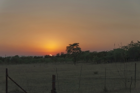 rus: Sunrise in savanna - Kudus Rus game lodge, Kudus Rus Nature Reserve, Rustenburg, South Africa Stock Photo