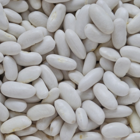 disarray: White haricot bean background