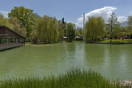 boris: Ariana Lake in Sofia Boris\