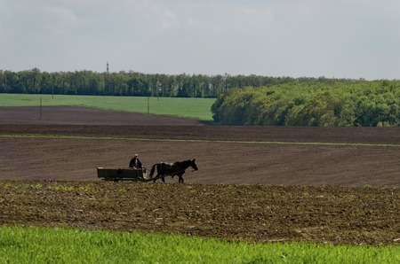 ploughing: Ploughing field in spring and cart, Zavet town Stock Photo