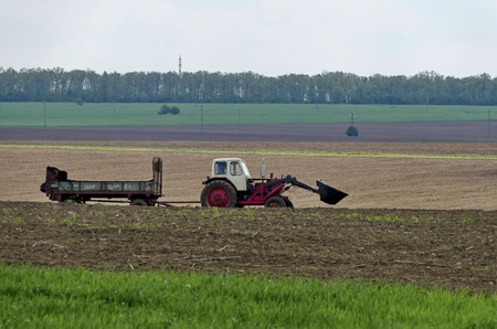 ploughing field: Ploughing field in spring. Tractor with trailer, Zavet town