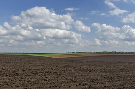 ploughing: Ploughing field in spring, Zavet town