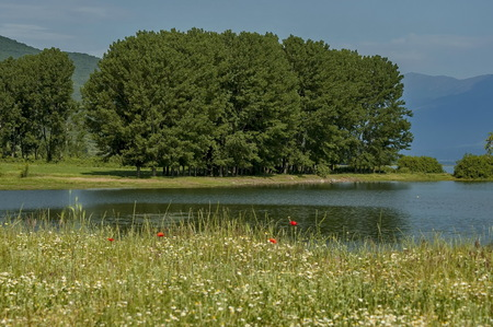 kerkini: Landscape of Kerkini shore with forest, Kerkini lake, nord Greece Stock Photo